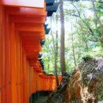 京都伏見稲荷大社のお山 金運アップのパワースポットはココ