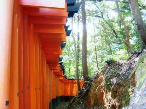 京都の伏見稲荷大社のお山で金運アップのご利益をいただく