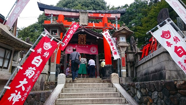 三ノ峰(下之社神蹟)は白菊大神の最強パワースポット