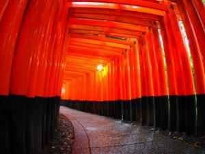 金運アップのご利益なら京都の伏見稲荷大社
