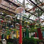 正寿院の風鈴まつりは京都宇治田原の夏の風物詩です