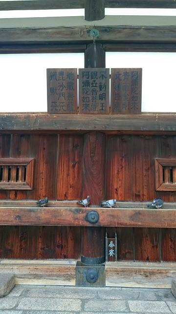 六角堂本堂裏側のパワースポット
