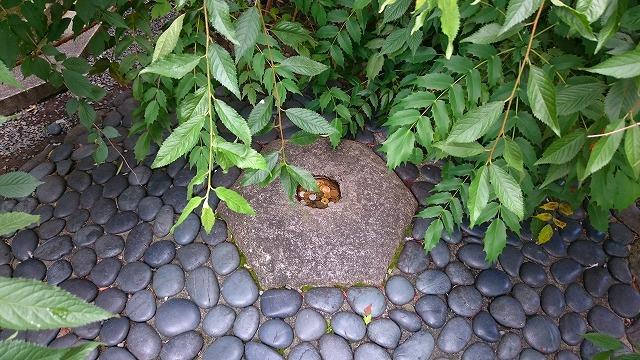 六角堂のへそ石(要石)