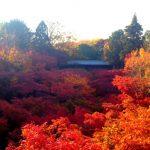 京都の温泉付のホテルと旅館 祐気取りや神社・お寺巡りにおすすめ