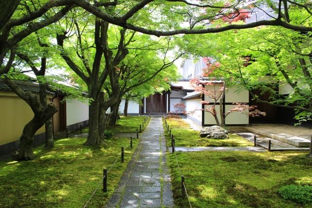 大徳寺は今宮神社のすぐ近く
