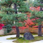 廬山寺で金運アップ!京都の強力なパワースポットの穴場