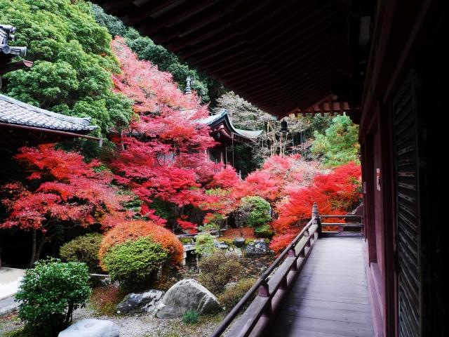 京都の毘沙門堂
