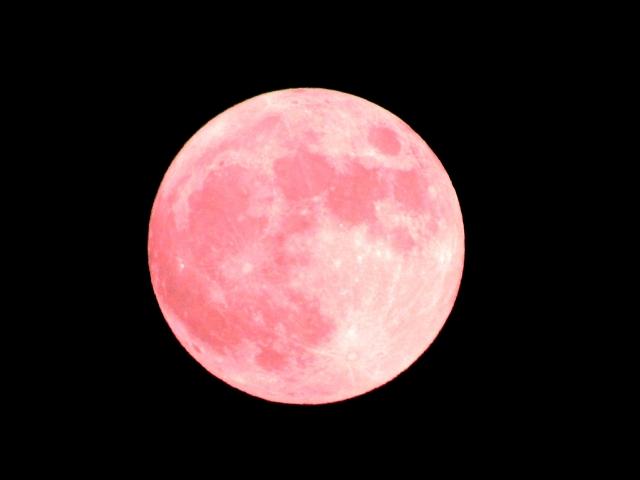 恋愛運アップの月花殿護符