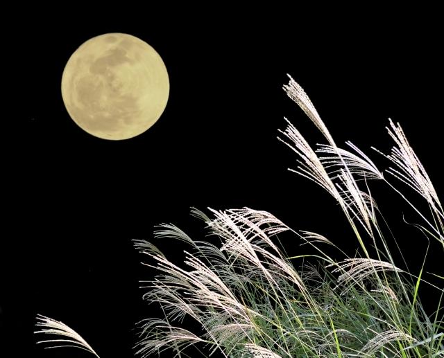 月花殿の恋愛護符