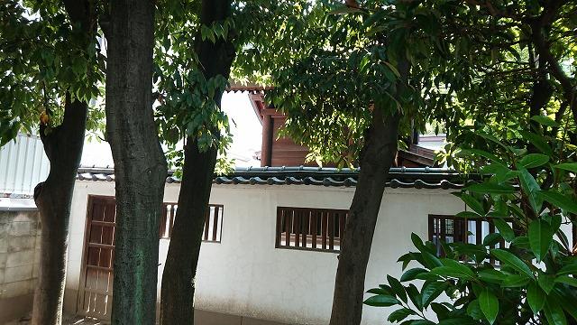サムハラ神社本殿の裏側