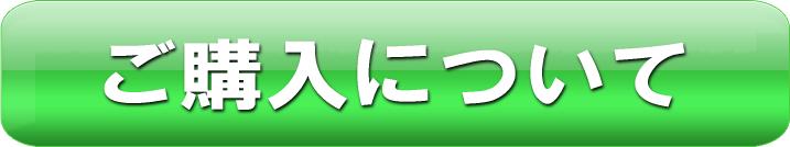 天龍翔 Heaven Dragon Fly(開運数珠)