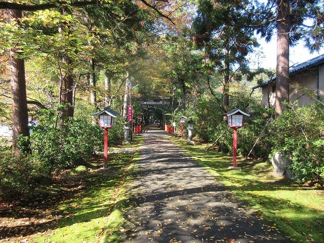 舟津神社一の鳥居から続く並木