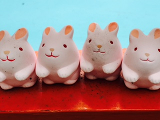 岡崎神社のご利益とウサギたち