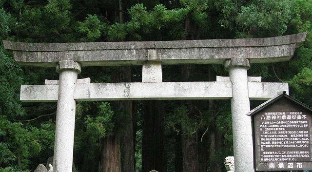 八海神社の杉並木