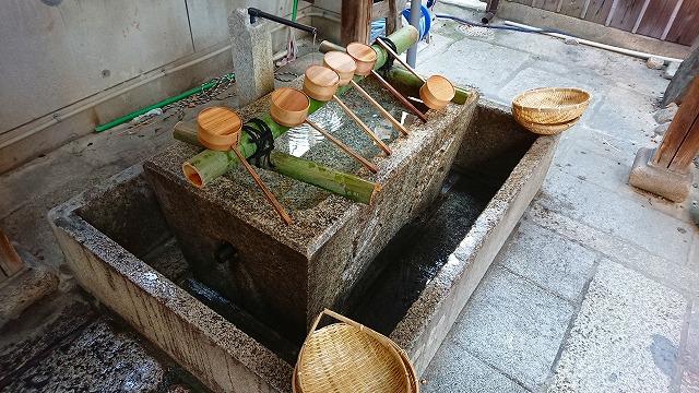 手水舎のザルで銭洗い