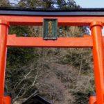 金櫻神社の金運ご利益体験談 山梨県のパワースポット効果で宝くじ当選