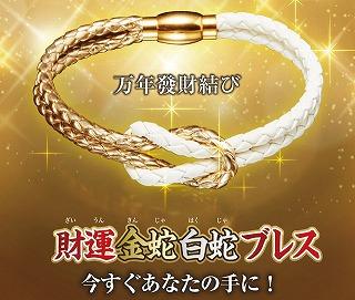 金蛇白蛇ブレスの金運アップ効果