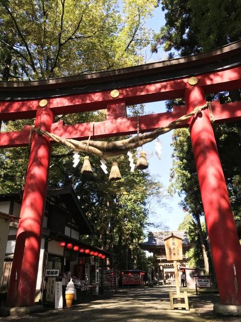 伊佐須美神社で良縁祈願大成功