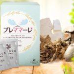 プレママーレは妊活の漢方薬☆月980円で始める効果的な飲み方