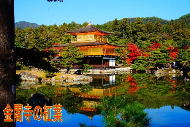 金閣寺は金運のパワースポット