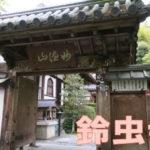 鈴虫寺で金運祈願☆飲食店の売上が上がった32歳女性の口コミ
